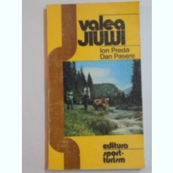 VALEA JIULUI - ION PREDA