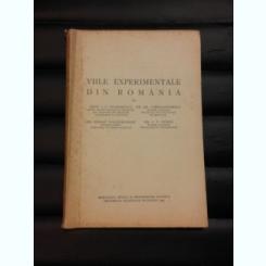 VIILE EXPERIMENTALE DIN ROMANIA - I.C. TEODORESCU