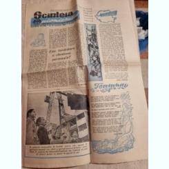 ZIARUL SCANTEIA PIONIERULUI 24 NOIEMBRIE/1960