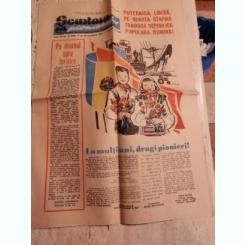 ZIARUL SCANTEIA PIONIERULUI 29 DECEMBRIE/1960