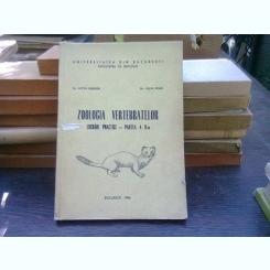 Zoologia vertebratelor. Lucrari practice-partea a II-a - Lotus Mester