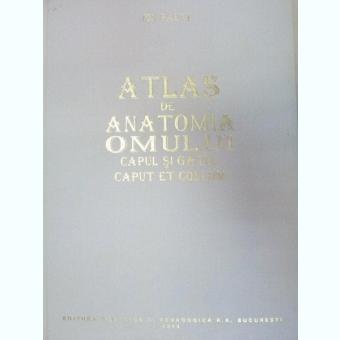 ATLAS DE ANATOMIA OMULUI.CAPUL SI GATUL/CAPUT ET COLLUM-ION PASAT 1995