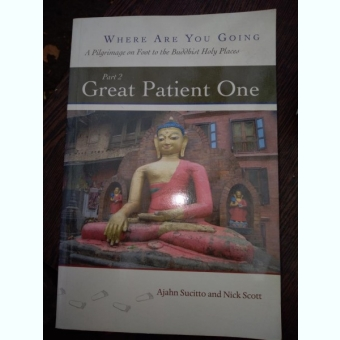Great Patient One Dhamma Books  - Ajahn Sucitto, Nick Scott