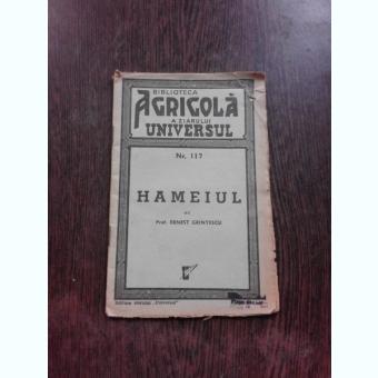 HAMEIUL , ERNEST GRINTESCU